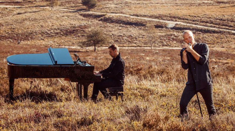 แปลเพลง Wild Wild Son - Armin van Buuren feat. Sam Martin